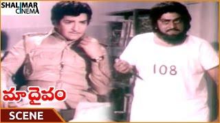 Maa Daivam Movie || Chalapathi Rao Try To Kill NTR || NTR, Jayachitra, Pandharibai || Shalimarcinema