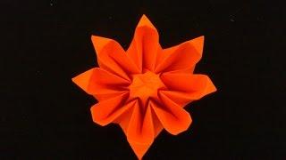 Cara Membuat Origami Bunga Garbera | Origami Bunga dan Tanaman