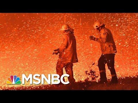 Devastating Wildfires Continue To Ravage Australia | The 11th Hour | MSNBC