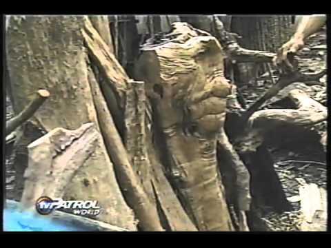 Pagharap ng Real, Quezon sa trahedya ng landslide