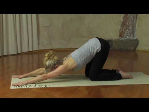 Yoga, the Puppy Dog Pose