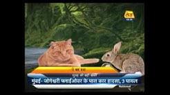 Main Bhagya Hu: Daily Horoscope   April 25, 2017   9: 30 AM