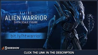 Aliens Hot Toys Alien Warrior 2.0 Movie Masterpiece 1/6 Scale Collectible Figure Review