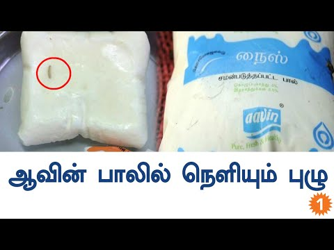 Aavin Milk Containing Worms Creates An Issue-Oneindia Tamil