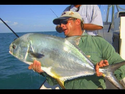 Offshore Wreck Fishing for Snook and Permit off Marco Island Florida