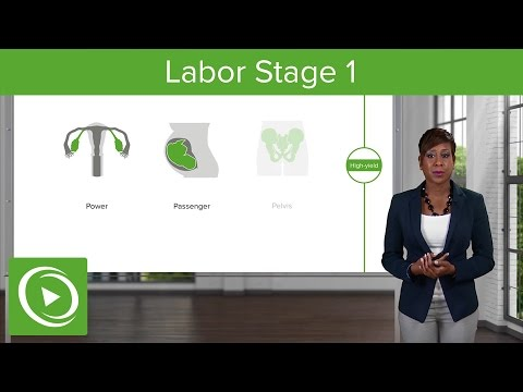 Labor Stage 1: Normal and Abnormal Labor – Obstetrics | Lecturio