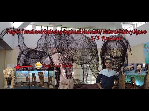Vlog 66 | Travel | Exploring | Regional Museum of Natural History Mysore