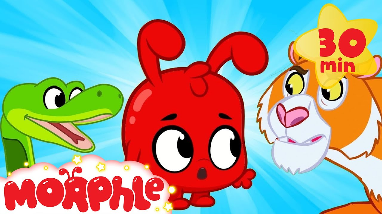 Morphle And The Scary Animals - Halloween | My Magic Pet Morphle | Cartoons For Kids | Morphle TV