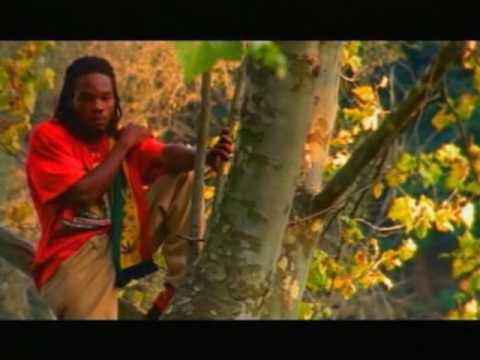 Morgan Heritage, LMS & Friends   Mount Zion Medley   reggae