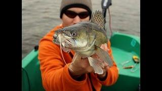ŁOWIENIE ZE STEPANOW-FISHING TEAM cz. 5 - KOGUTY, głowacze STAND-UP, FLEX-STREAM