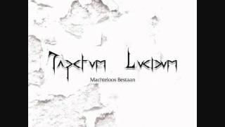 Tapetum Lucidum - Interlucidum