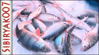 Мормышка. Рыбалка 2019. Новая зимняя удочка и Карбоновый кивок