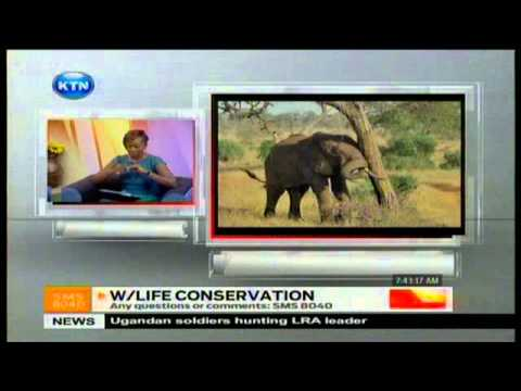 Sunrise Live Interview :  Wildlife Conservation