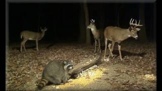 October 2016 Deer Trail Pictures