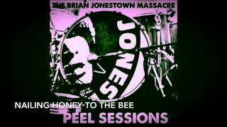 The Brian Jonestown Massacre (Peel Session) - 07.Nailing Honey To The Bee