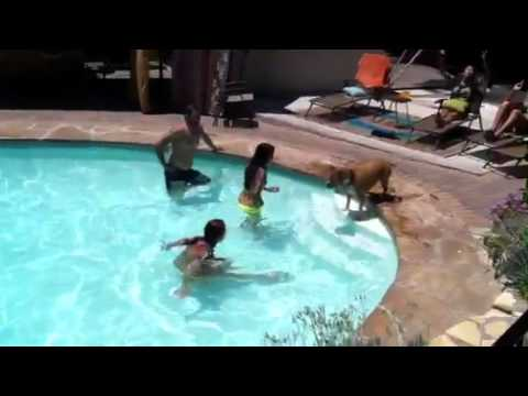 Duvall takes a swim with friends.