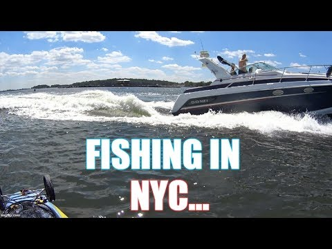 Fishing NYC: Close Call with Boater, Giant Porgies