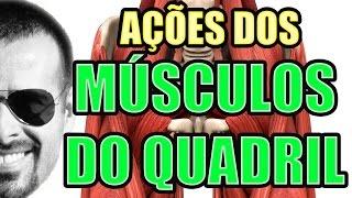 Vídeo Aula 116 - Anatomia Humana - Sistema Muscular: Ações dos Músculos do Quadril