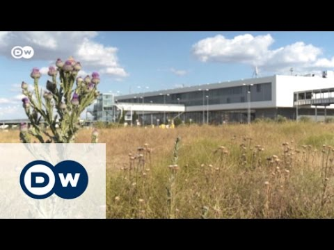 Spain's white elephant airport | Business Brief