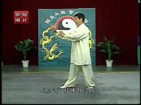 Beijing Chen style Tai Chi 1st routine 2/2