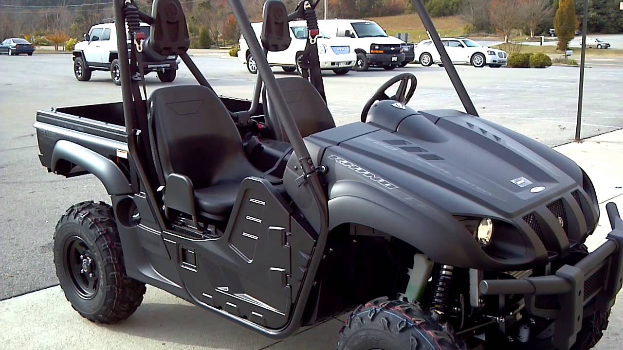Yamaha Rhino Cage