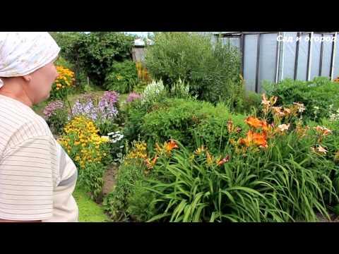 Сад и огород. Обзор