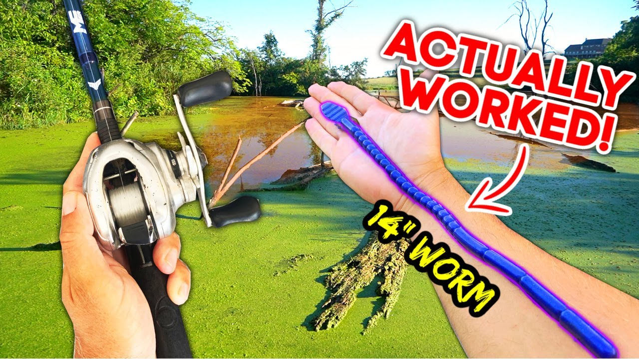 WORLD'S LARGEST Fishing Worm CHALLENGE!! (Pond Fishing)