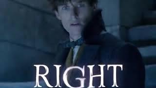 FANTASTIC BEASTS 2  Newt Does Not Seek Powers  Promo 2018 Fantasy Movie HD
