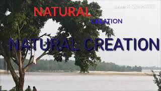 Natural Creation/official channel/