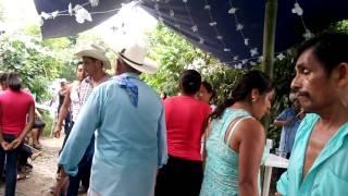 Huapango de los hermanos solis de coxquihui veracruz