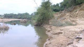 Tin Tức 24h: Bờ sông Hiếu, Nghệ An đang bị sạt lở nghiêm trọng