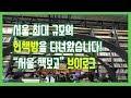 [그때 그거] 서울책 보고에서 책 보고 왔습니다. 2탄(브이로그)