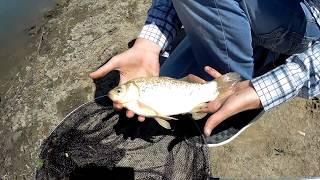 Рибалка в Одеській області, с. Красносілка, Академія відпочинку