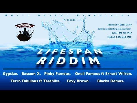 Life Span Riddim Mix