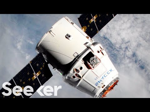SpaceX's Falcon 9 Is Sending Groundbreaking Science To The ISS | Countdown To Launch