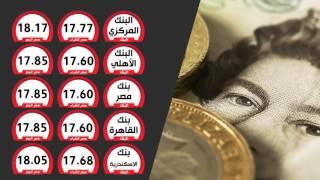 بالفيديوجراف.. سعر الدولار الآن فى البنك المركزى والأهلى وبنك مصر