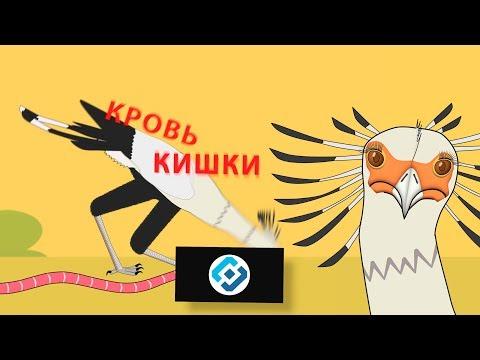 Книга Животных - Птица-секретарь