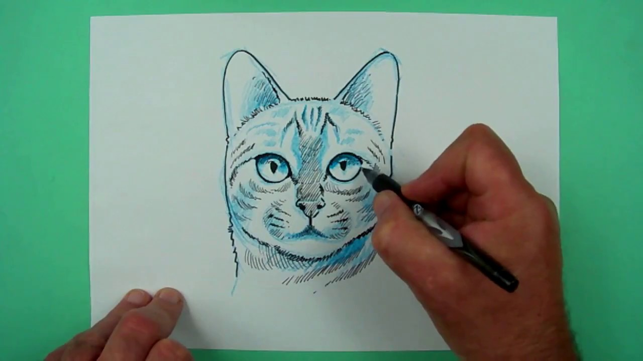 wie zeichnet man einen katzenkopf zeichnen f r kinder. Black Bedroom Furniture Sets. Home Design Ideas