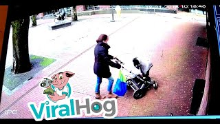 Woman with Pram Almost Hit by Falling Tree  ViralHog