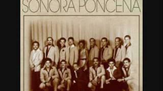 PAÑO DE LAGRIMAS SONORA PONCEÑA