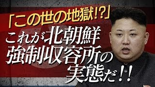 この世の地獄!? これが北朝鮮強制収容所の実態だ! 【ザ・ファクト#008】 thumbnail