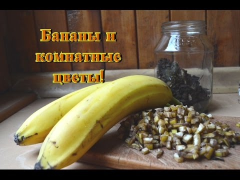 Кому показаны бананы, и сколько их можно есть?