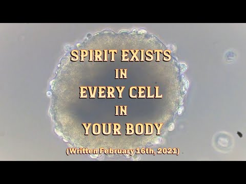 Spirit Exists In Every Cell In Your Body