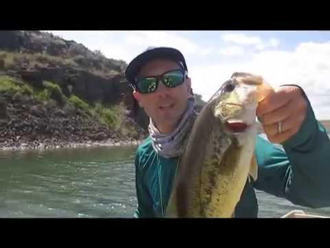 Fly Fishing Tips For Largemouth Bass