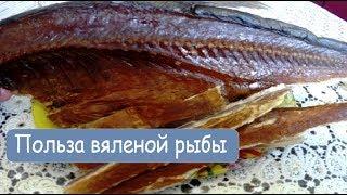 Польза вяленой рыбыьза