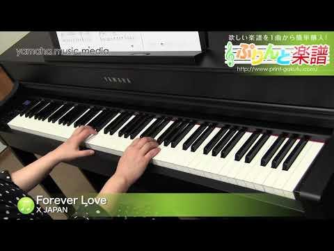 Forever Love Acoustic Version X JAPAN