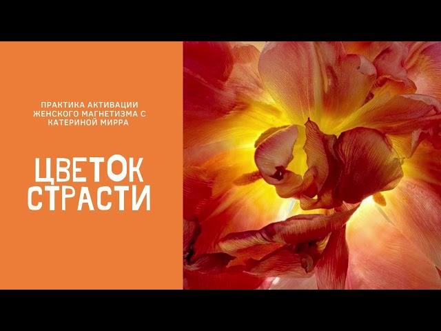 Цветок страсти. Практика- медитация активации женского магнетизма от Катерины Мирра