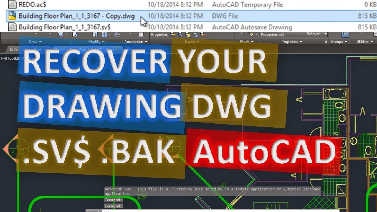 Recover AutoCAD file DWG  SV$  BAK easy and fast, Find Autosave or Backup  File