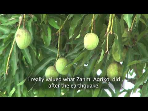 'Greening' the Central Plateau - PIH Haiti