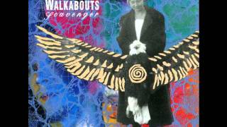 The Walkabouts - Stir The Ashes